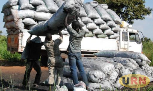 A photo of local people loading charcoal bags into a Lorry truck